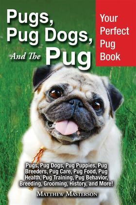 Pugs, Pug Dogs, and The Pug
