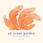 An Ocean Garden