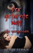 Der Getarnte Wolf, Buch 2