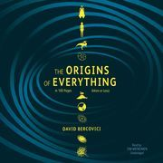The Origins of Everything in 100 Pages (More or Less)
