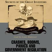 Crashes, Booms, Panics, and Government Regulation