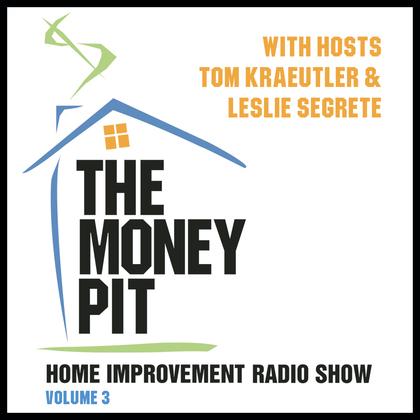 The Money Pit, Vol. 3