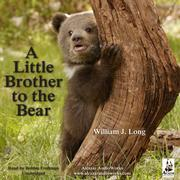 A Little Brother to the Bear, and Other Animal Stories