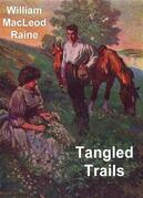 Tangled Trails: A Western Detective Story