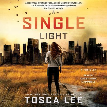 A Single Light