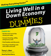 Living Well in a Down Economy for Dummies
