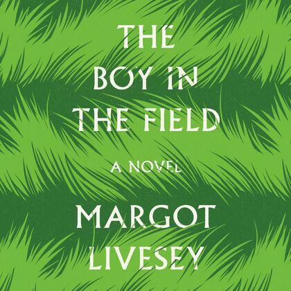 The Boy in the Field