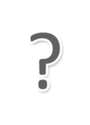 Makhno and Memory