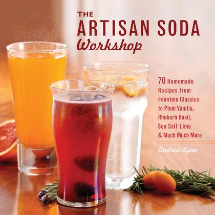 The Artisan Soda Workshop