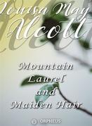 Mountain-Laurel and Maidenhair