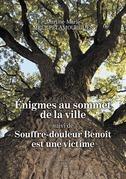 Énigmes au sommet de la ville suivi de Souffre-douleur Benoît est une victime BENOIT EST UNE VICTIME