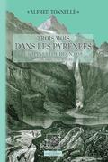 Trois mois dans les Pyrénées et dans le Midi en 1858