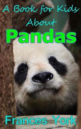 A Book For Kids About Pandas:  The Giant Panda Bear