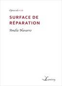 Surface de réparation
