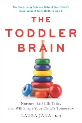 The Toddler Brain