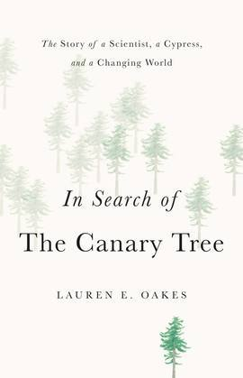 In Search of the Canary Tree