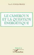 Cameroun et la question energétique le