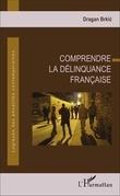 Comprendre la délinquance française
