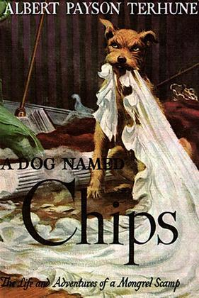 A Dog Named Chips: The Life and Adventures of a Mongrel Scamp