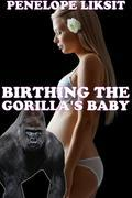 Birthing The Gorilla's Baby