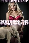 Birthing The Elephant's Calf