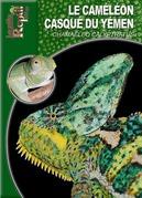 Le caméléon casqué du Yémen