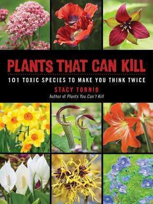 Plants That Can Kill