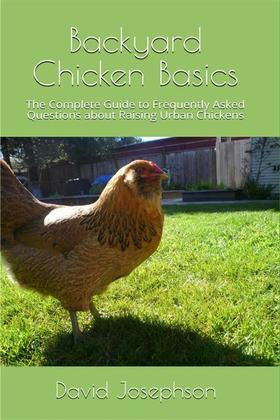 Backyard Chickens Basics
