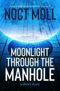 Moonlight Through the Manhole