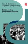 Democracia y poder constituyente