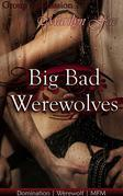 Big Bad Werewolves
