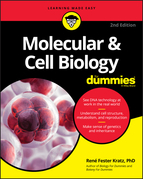 Molecular & Cell Biology For Dummies
