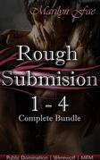 Rough Submission 1 - 4