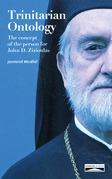 Trinitarian Ontology