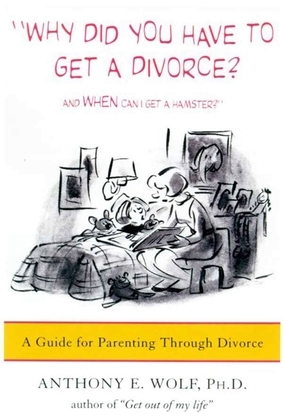 Why Did You Have to Get a Divorce? And When Can I Get a Hamster?