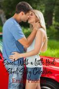 Sweet With a Little Heat (Short Story Collection)