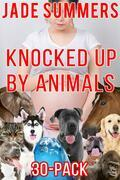 Knocked Up by Animals 30-Pack
