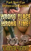 Wrong Place - Wrong Time!