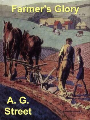 Farmer's Glory