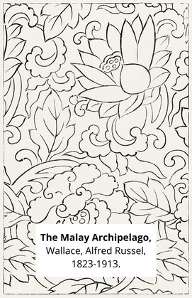 The Malay Archipelago,