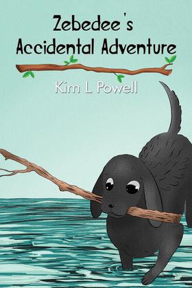Zebedee's Accidental Adventure