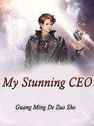 My Stunning CEO