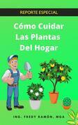 Co?mo Cuidar las Plantas del Hogar