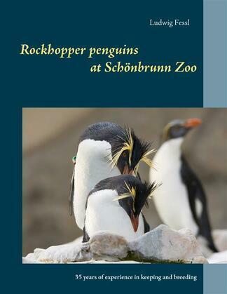 Rockhopper penguins at Schönbrunn Zoo