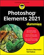 Photoshop Elements 2021 For Dummies