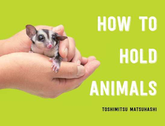 How to Hold Animals