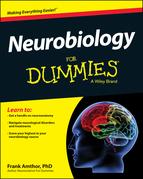 Neurobiology For Dummies