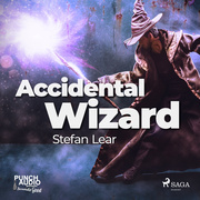Accidental Wizard