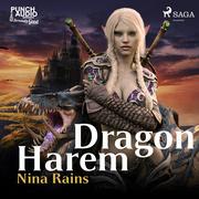 Dragon Harem