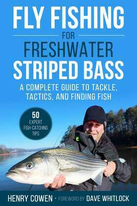 Fly Fishing for Freshwater Striped Bass